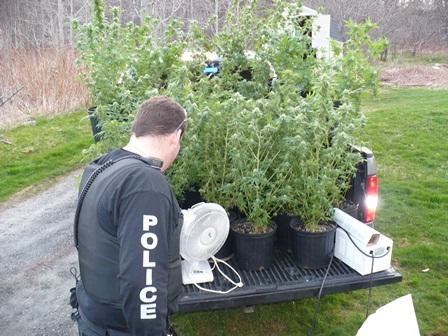 Street Crime Unit - Cape Breton Regional Police Service